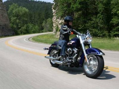 Harley Davidson FLST/I Heritage Softail photo