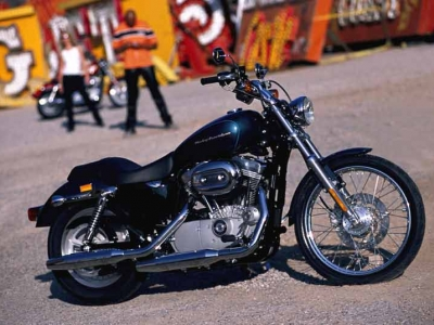 Harley Davidson XL883 Sportster photo